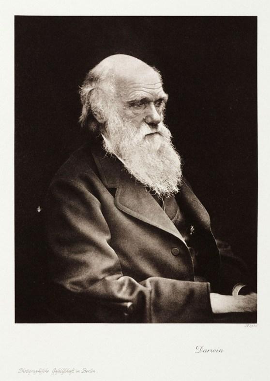 A black and white photograph of Charles Darwin in his later years. Pictured seated, looking to left of camera