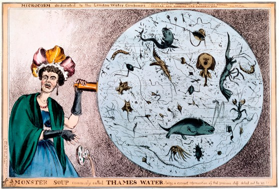 A colour engraving of a shocked woman of the early 1830s looking at the microscopic life present in a sample of Thames water