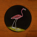 A Copper Plate Slider by Carpenter & Westley showing elements of Zoology birds Patagonian penguin red flamingo rose-coloured spoonbill and agami heron