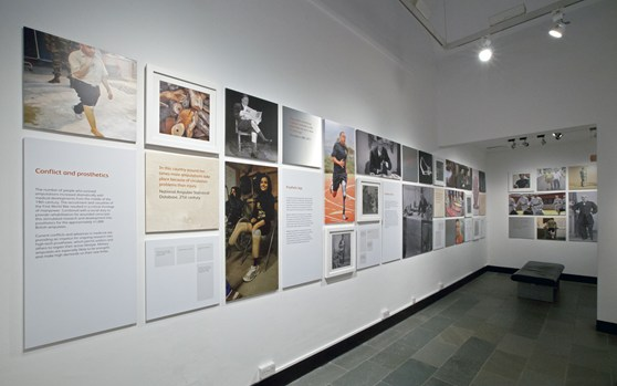 Colour photograph of a display wall in the Reconstructing Lives exhibition