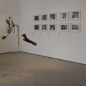 Colour photograph of an exhibition space displaying prosthetic arms hanging by wire