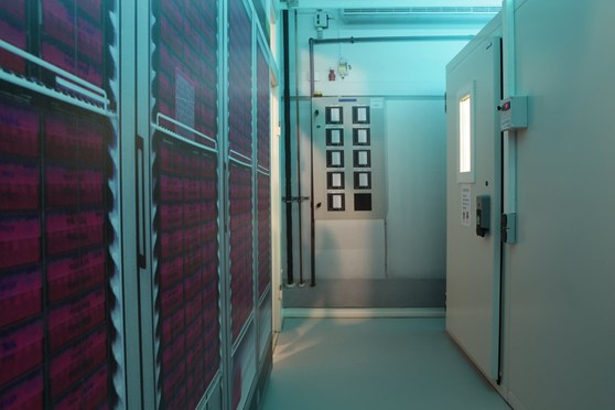 Colour photograph of the corridor of a medical refrigeration facility