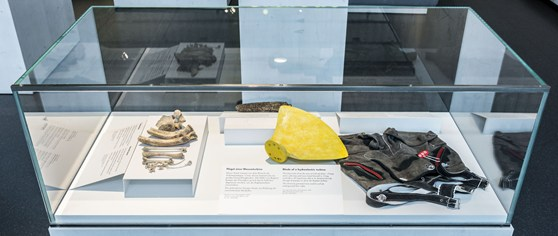 Colour photograph of museum objects on display in a glass case