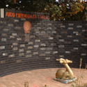 Colour photograph of an AIDS memorial wall in Johannesburg
